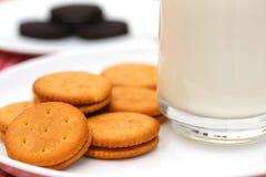 Cream печенья с стеклом молока Стоковые Изображения RF