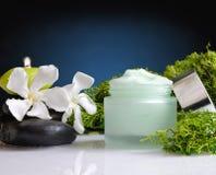 Cream предпосылка сини вид спереди водорослей опарника Стоковое Изображение