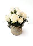 cream розы Стоковые Изображения RF
