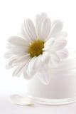 cream сторона стоковая фотография