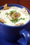 cream суп гриба Стоковая Фотография