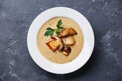 Cream суп с грибом porcini Стоковое Изображение RF