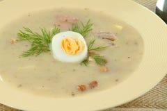 Cream суп Стоковое Фото