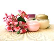 cream цветки Стоковое Фото