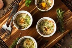 Cream яичко печет в Ramekin стоковое изображение