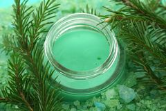 Cream. Green cream in a glass jar is on the salt and the branches of fir Royalty Free Stock Images