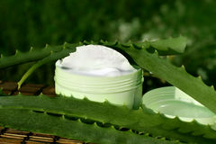 Cream with aloe vera Stock Photography