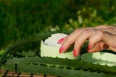 Cream with aloe vera Stock Images