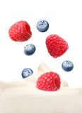 Cream with berry raspberry and blueberry Stock Photos