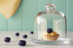 Cream and blueberries tartlets Royalty Free Stock Photo