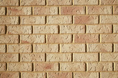 Cream bricks Royalty Free Stock Photography