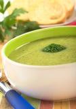 Cream of Broccoli Stock Image