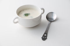 Cream of Broccoli Mushroom Soup. Isolated Stock Image