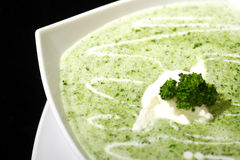 Cream of broccoli soup Stock Images