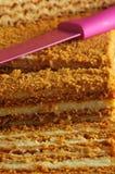 Cream cake Stock Image