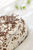 Cream cake. Decorated with chocolate Royalty Free Stock Images