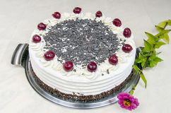 Cream cake with cherries Royalty Free Stock Image