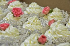 Cream cake decorated with rose royalty free stock photos