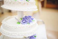 Cream Cake with Violet Roses Royalty Free Stock Image