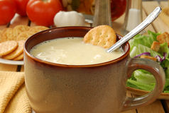 Cream of celery soup Stock Image