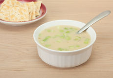 Cream of Celery Soup royalty free stock photo