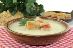 Cream of celery soup Royalty Free Stock Photos