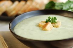 Cream of Celery Soup Royalty Free Stock Images