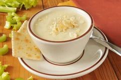 Cream of celery soup Royalty Free Stock Photo