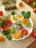 Cream cheese ball with cress, tomatoes and egg Stock Images