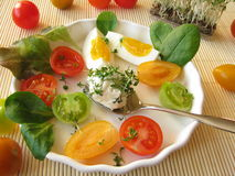 Cream cheese ball with cress, tomatoes and egg Stock Photo