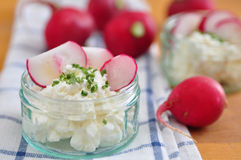 Cream Cheese with Chives. And red radish Stock Image