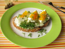 Cream cheese, egg and cress on bread Royalty Free Stock Photography