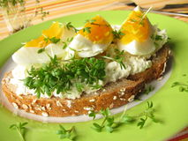 Cream cheese, egg and cress on bread Royalty Free Stock Images