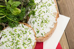 Cream Cheese with fresh Herbs Stock Photography