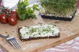 Cream Cheese and Garden Cress Stock Photography