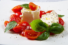 Cream cheese with red fresh tomatoes Royalty Free Stock Photos