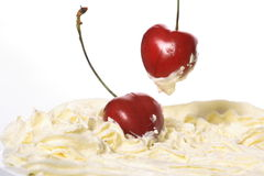 Cream cherries Royalty Free Stock Image