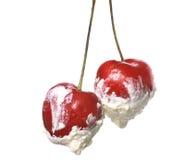 Cream cherries Royalty Free Stock Photography