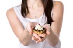Cream and chocolate cake Stock Image
