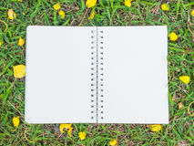 Cream color notebook on green grass Stock Photography