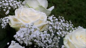 Cream color roses bouquet stock footage