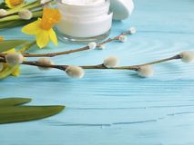 Cream cosmetic treatment toiletry yellow flowers blue wooden background daffodil, fluffy willow, spring. Cream cosmetic yellow flowers treatment blue wooden Royalty Free Stock Photo