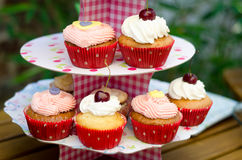 Cream Cupcakes on a pink stand Stock Images