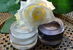 Cream day and night with white rose Stock Photos