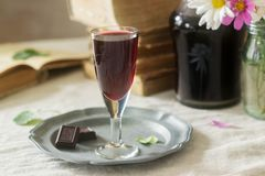 Cream de Cassis homemade blackcurrant liqueur in small glasses, books and flowers. Rustic style. stock photography