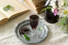Cream de Cassis homemade blackcurrant liqueur in small glasses, books and flowers. Rustic style. royalty free stock images