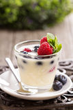 Cream dessert with berries. Cream dessert with raspberry and blueberry in a glass Stock Photos