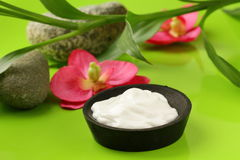 Cream for face and body  on a green background Royalty Free Stock Image