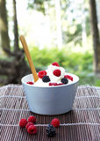 Cream with fresh raspberry and blackberry Royalty Free Stock Images