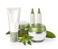 Cream with green leaves Stock Image